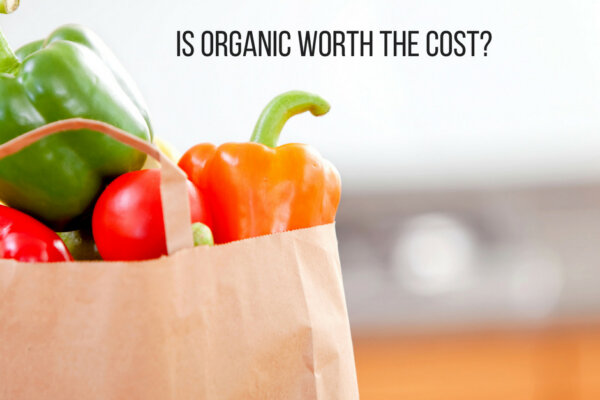 Paper bag with tomatoes and peppers - Is Organic Worth the cost - text on image for blog post